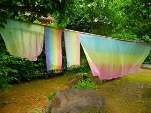 虹染めの素 一回分