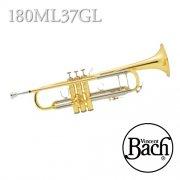 バック : B♭管トランペット 180ML 37ベル ラッカー(GL) モデル