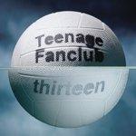 TEENAGE FANCLUB / THIRTEEN (180g) (LP...