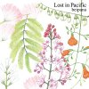 beipana「Lost in Pacific」(TW01)