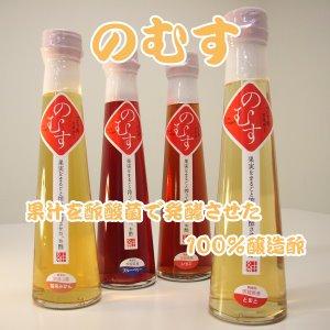 『のむす』果実酢(無添加醸造酢)