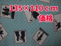 <img class='new_mark_img1' src='//img.shop-pro.jp/img/new/icons41.gif' style='border:none;display:inline;margin:0px;padding:0px;width:auto;' />USA-影絵/写真×ターコイズ/白格子地