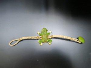 ベークライト 黄緑色のカエルのブレスレット(S7645)