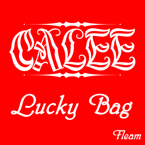 <img class='new_mark_img1' src='//img.shop-pro.jp/img/new/icons33.gif' style='border:none;display:inline;margin:0px;padding:0px;width:auto;' />CALEEキャリー lucky bag/CALEE