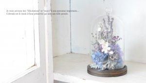 ガラスドームフラワー ジャルダンルヴェール ブリュ