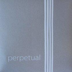 パーペチュアル チェロ弦 C線 カデンツァ