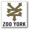 ZOO YORK ズーヨーク(ベアリング)