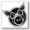 PIG WHEELS ピッグ(全アイテム)