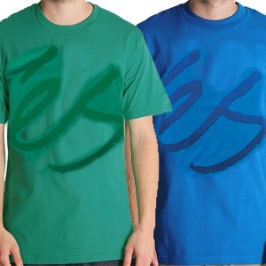 【エススケートボード ES FOOTWEAR スケボー Tシャツ】 Tonal Script 2 NO11