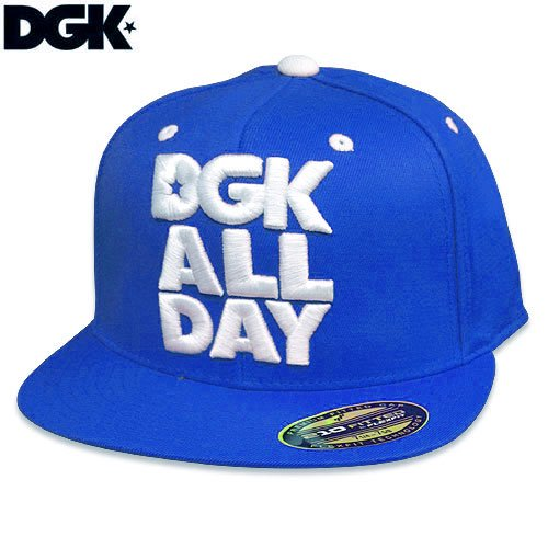 【DGK ディージーケー スケボー キャップ】ALL DAY FLEXFIT HAT【ブルー ロイヤル】NO13