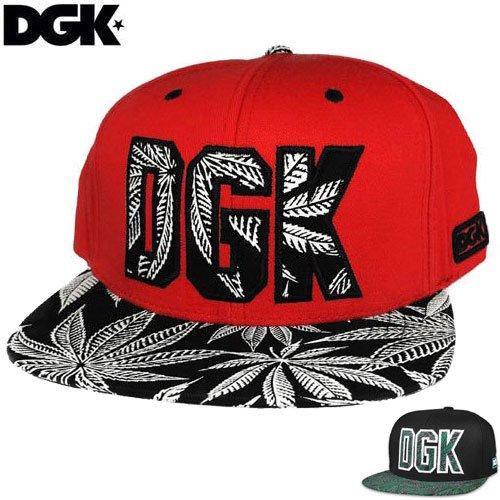 【ディージーケー DGK スケボーキャップ】HOME GROWN SNAPBACK CAP【2カラー】NO54