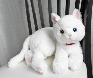 ひざねこ【白猫】