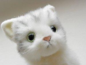 日本製の子猫ぬいぐるみ【おすわりサバトラ白猫】Sサイズ