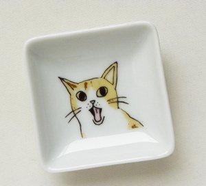 四角い豆皿【ふわ・・ぁ?】茶トラ白猫