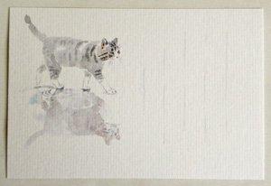 季節のはがき【水鏡とサバトラ猫】