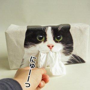猫口からにゅーっと取り出すティッシュケース【はちわれ猫】