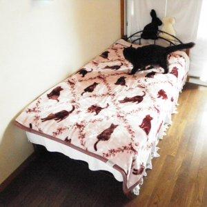 洗える!衿付き合わせ毛布【猫と小花】ピンク・シングルサイズ
