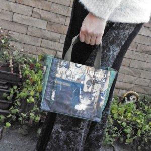 猫のダヤン ミニポケットバッグ【鏡の中...