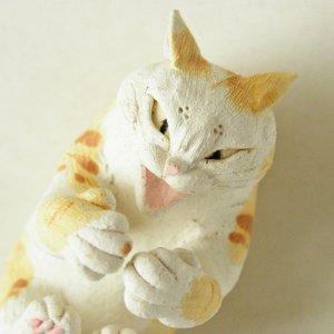 真剣にゃ猫【茶トラ白猫】