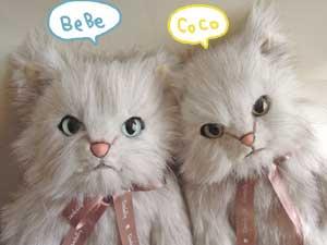 BeBe&CoCo ♀6才