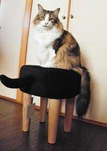 黒猫しっぽスツール