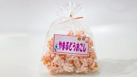 のだ山ぶどうおこし(大)