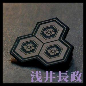 戦国紋章  三盛亀甲剣花菱 バッチ