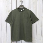 ANATOMICA『POCKET TEE』(Green)