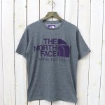 THE NORTH FACE PURPLE LABEL『H/S Logo Pocket Tee』(Mix Gray)