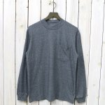 THE NORTH FACE PURPLE LABEL『L/S Mock Neck Tee』(Mix Gray)