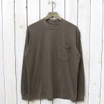 THE NORTH FACE PURPLE LABEL『L/S Mock Neck Tee』(Brown)