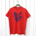 ENGINEERED GARMENTS『Printed Cross Crew Neck T-shirt-Floral』(Red)