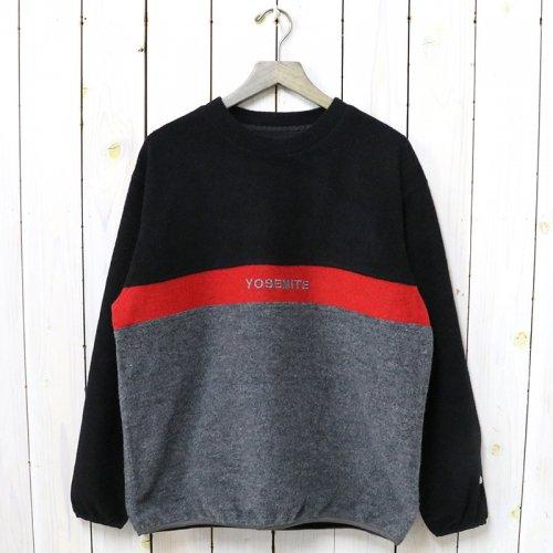 THE NORTH FACE PURPLE LABEL『Crew Neck Sweater』(Gray)