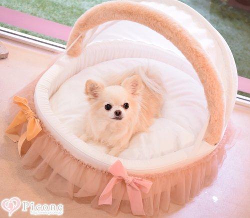 【Louis dog】Organic Cradle 2017