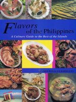 Flavors of the Philippines - a culinary guide to the best of islands