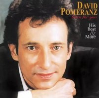<img class='new_mark_img1' src='https://img.shop-pro.jp/img/new/icons53.gif' style='border:none;display:inline;margin:0px;padding:0px;width:auto;' />David Pomeranz / Born For You His Best & More (アナログ盤 / LP)