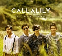 カラリリー (Callalily) / Flower Power
