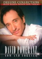 デイヴィッド・ポメランツ (David Pomeranz) / Now And Forever (You're The Inspiration)