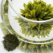 #13 芳生緑牡丹(ほうせいりょくぼたん) Great Green  緑茶[黄山毛峰] の工芸茶