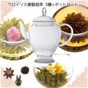クロイソス康藝銘茶(こうげいめいちゃ)3種+アリエルポットセット