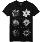 Asking Alexandria - Withered Flower [入荷予約商品]