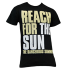 The Dangerous Summer - Reach For The Sun [入荷予約商品]