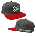 For All Those Sleeping - Symbol (Red/Gray) (Snapback) [入荷予約商品]