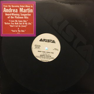 """ANDREA MARTIN - BABY CAN I HOLD YOU - 12"""" (ARISTA)"""