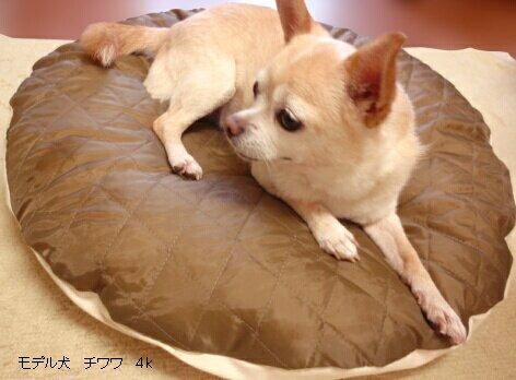 ペット用羽毛ベッド(ラウンド型)