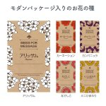 【国産】モダンクラフト花の種 1個