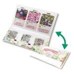 【国産】グリーンメール種子3個セット(花)
