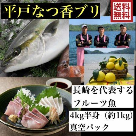 平戸夏香ブリ 片身(長崎県平戸沖養殖)