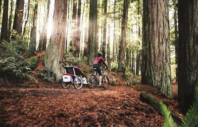 【レンタル2000円/日】スーリー・チャリオット・チータ1+サイクリング(色:レッド)<Thule Chariot Cougar1+Cycle>★1人乗り【画像3】