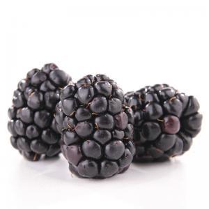 電子タバコ用フレーバーBlackberry(Mora) flavor 10ml